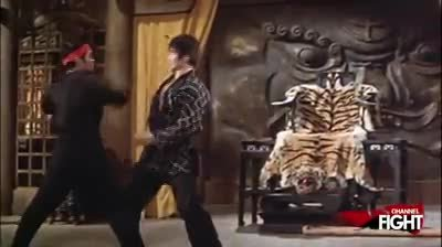 Bruce Lee Fight Scenes From the Fight Channel