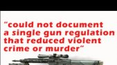 Gun Control: New Documentary
