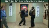 Systema Spetsnaz DVD 4 - Strikes - Punches - Kicks - Russian Martial Art
