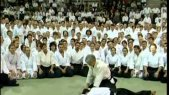 Beautiful Aikido Demonstration-The Amazing Move