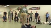 Systema Russian Martial Art Stick Disarming by Vladimir Vasiliev
