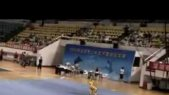 Wushu Masters Competing in China