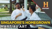 Singa Fist: Singapore's Homegrown Martial Art | 10 Things You Don't Know About Singapore
